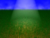 Sunny Meadow 3D Model Screenshot / Render